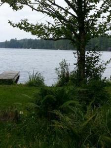 4078, 81 Lake View Road, Otter Lake, NY 13338