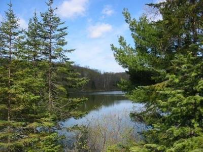 Photo of ON Jamie Lake Dr #Lots 2-7, Presque Isle, WI 54557