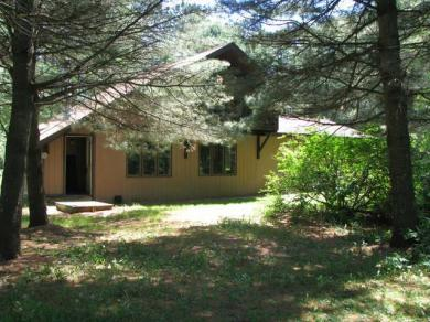 1985 Lighthouse Lodge Rd, Three Lakes, WI 54562