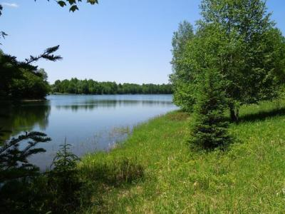 Photo of ON Murphy Lake Rd, Presque Isle, WI 54557