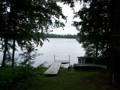 N9921 Cliff Rd, Tomahawk, WI 54487