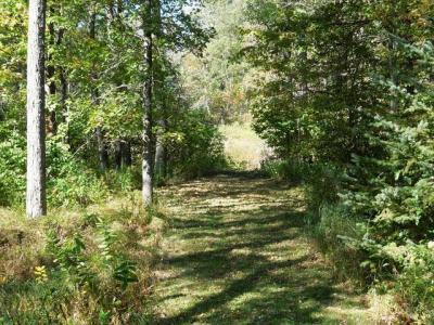 Photo of W7800 Cummings Rd, Ogema, WI 54490