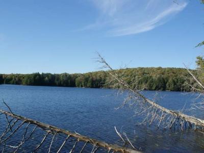 Photo of NEAR Gaylord Lake Rd, Presque Isle Marenisco, MI 49947
