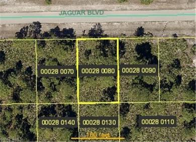 1118 Jaguar Blvd, Lehigh Acres, FL 33974