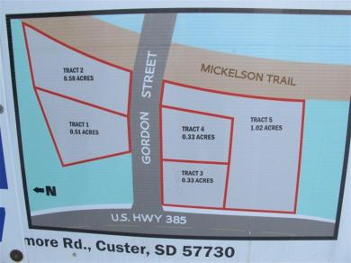 Lot 5 W Gordon St, Custer, SD 57730