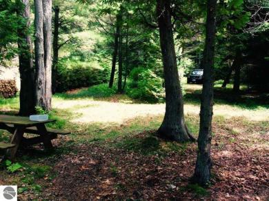 Michigan Trail, Kewadin, MI 49648