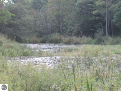 00 Lund Road, Fife Lake, MI 49633