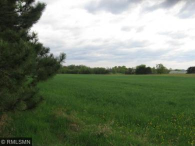 10 Acres on Trail Road, Pepin, WI 54759