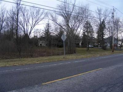 Photo of V/L Pletcher Road, Lewiston, NY 14092
