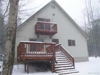 5051 Canada Hill Rd, Ellicottville, NY 14731
