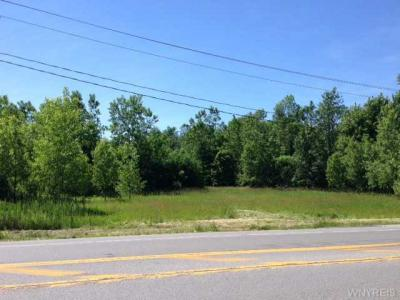 Photo of 00 Buell St West, Newstead, NY 14001