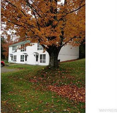 Photo of 6056-6062 Ashford Hollow Road, Ashford, NY 14171