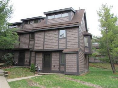 8 Centerline Rd-the Woods, Ellicottville, NY 14731