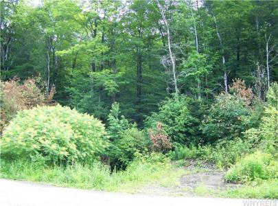 37 acres Pin Oak, Boston, NY 14025