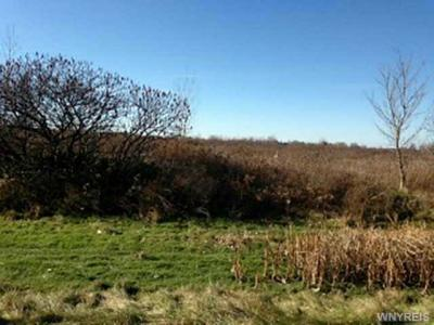 Photo of VL Townline Rd, Lewiston, NY 14092