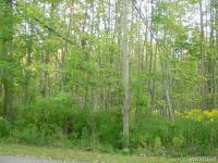 Woodside Dr, Rushford, NY 14777