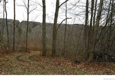 Wells Rd, Wirt, NY 14739