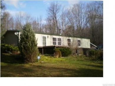 4542 Riceville Rd, Machias, NY 14171
