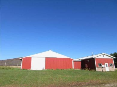 6122 Mutton Hollow Road, Great Valley, NY 14741