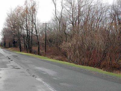 Photo of Route31, Murray, NY 14470