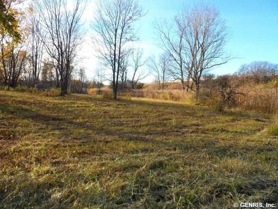 Photo of 212 State Route 318, Phelps, NY 14532
