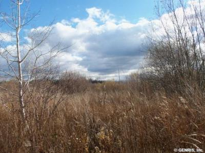 Photo of Moore Rd, Newstead, NY 14001