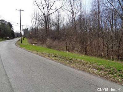 Photo of Crow Hill Rd, Skaneateles, NY 13152