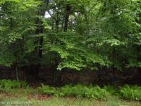 1512 Woods End Road, Pocono Lake, PA 18347