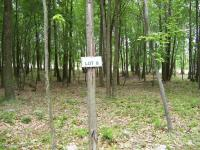 8 Wild Pines, Pocono Pines, PA 18350