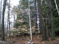 222 Woodland Terrace, Pocono Lake, PA 18347
