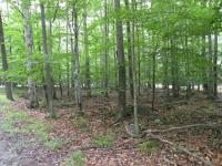 210 Fox Trail, Pocono Lake, PA 18347