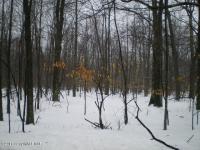 864 Woods End Road, Pocono Lake, PA 18347